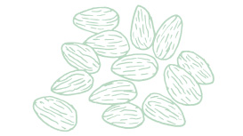 Light green Mary Kay skin care ingredient illustration of almonds